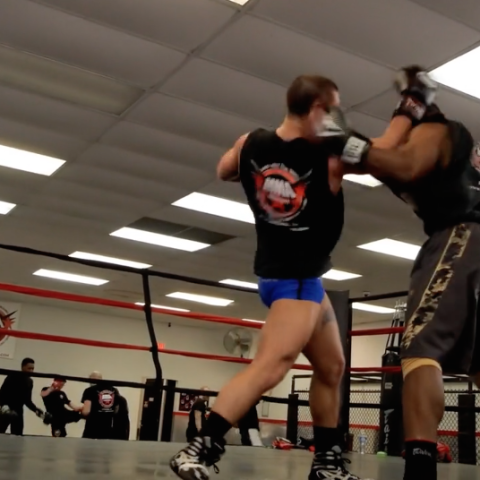 Vandabry MMA